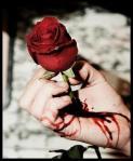 rosa_traspasando_mano